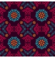 Ethnic lace pattern vector image