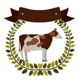 colorful olive crown and ribbon with cow vector image