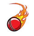 Flaming Cricket Ball vector image vector image