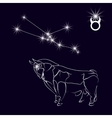 Constellation Taurus Realistic star White bull vector image