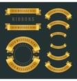 Vintage gold shiny ribbons retro style vector image