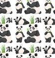 Seamless panda and bamboo vector image vector image