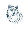 white wolf Malamute Siberian husky vector image