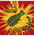 Comic style Grenade explosion Design element for vector image vector image