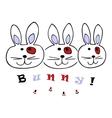 Bunny rabbit vector image