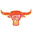 texas longhorn bull head vector image