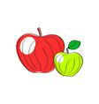 apples set of red green vector image