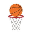 ball basket basketball score shooting vector image