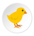 chick icon circle vector image