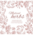 Vintage decorative background with medicinal vector image