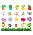 Plants and insects in the garden vector image