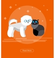 character design cat and dog vector image