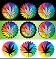 Cannabis Marijuana hemp leaf symbol stamps vector image
