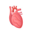 cartoon of human heart central organ vector image