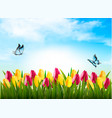 nature background with green grass flowers and a vector image