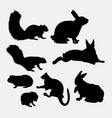 bunny and squirrel mammal animal silhouette vector image