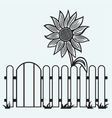 Sunflower and fence vector image vector image