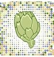 A colorful of fresh artichoke vector image vector image