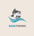 bass fish icon vector image