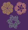 Ornamental round floral patterns vector image vector image