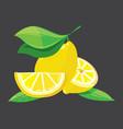 bright lemons vector image vector image