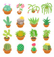green cactuses icons set cartoon style vector image