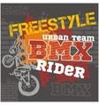 BMX rider - urban team design vector image