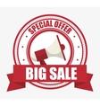 special offer big sale megaphone banner vector image