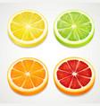 citrus slices realistic lemon orange lime vector image