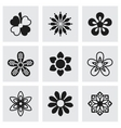 Flowers icon set vector image