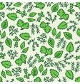 green hergbs seamless pattern vector image