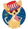 chihuahua america vector image