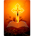 Cross symbol vector image