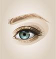 Eye close up vector image