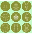 insect icons set dor-beetle and firefly firebug vector image