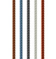 Leather seamless braided plait vector image
