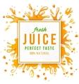 Paper emblem with juice splashes vector image