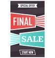 social media final sale banner vector image