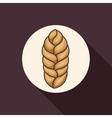 Wheat ear plant design vector image