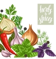 Background design with various herbs and spices vector image