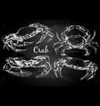 Hand drawn crabs vector image