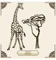 giraffe and mehendi ornament vector image vector image