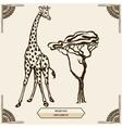 giraffe and mehendi ornament vector image