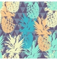 Seamless pattern with pineapple on triangle vector image