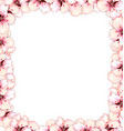 frame restangle blossoming sakura or cherry red vector image