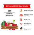 eat colors for your health red food vector image vector image
