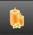 realistic candles with plumeria flowers vector image