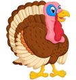 cute turkey cartoon posing vector image