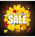 Seasonal big autumn sale business background with vector image