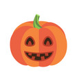 closeup of smiling pumpkin vector image